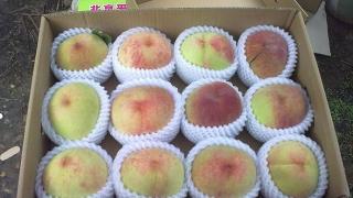 如何辨别是不是平谷大桃,什么样的桃子更甜